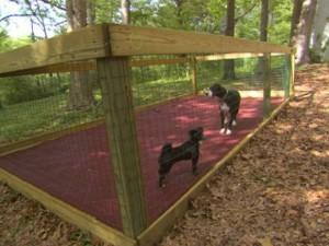 Проект несложного вольера для собаки