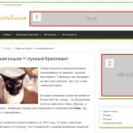 """Места для рекламы на сайте """"Котовасия"""""""