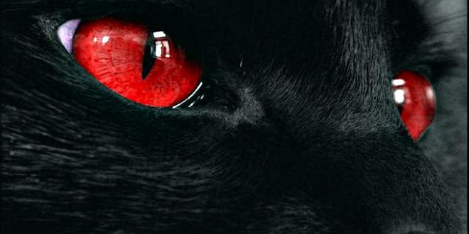 Из детства — 5 ужастиков про домашних животных