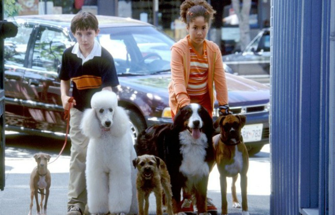 Кино про говорящего пса