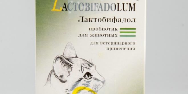 Лактобифадол для животных — пробиотик для животиков