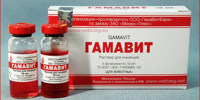 Гамавит — витамины для кошек и котят