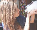 Отзыв о цветном кролике