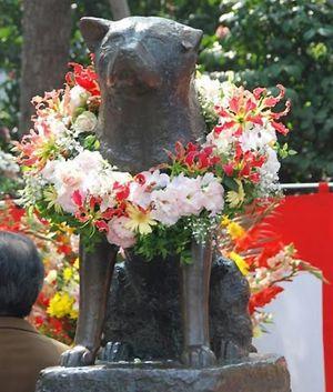 Памятник Хатико в японии