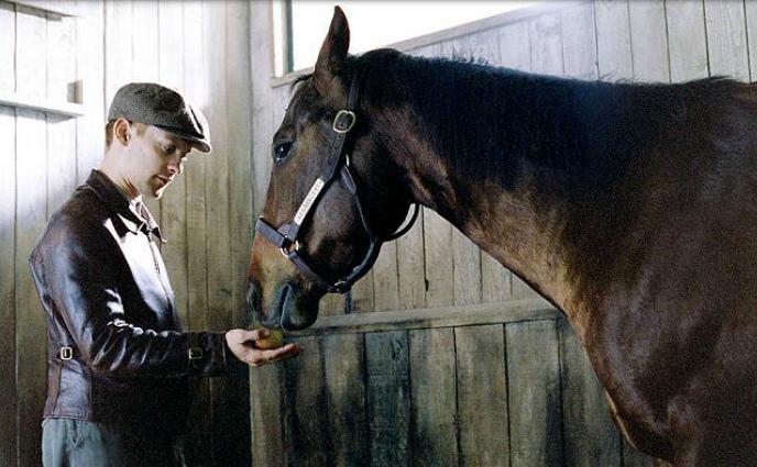 Кадр из фильма про лошадь Фаворит