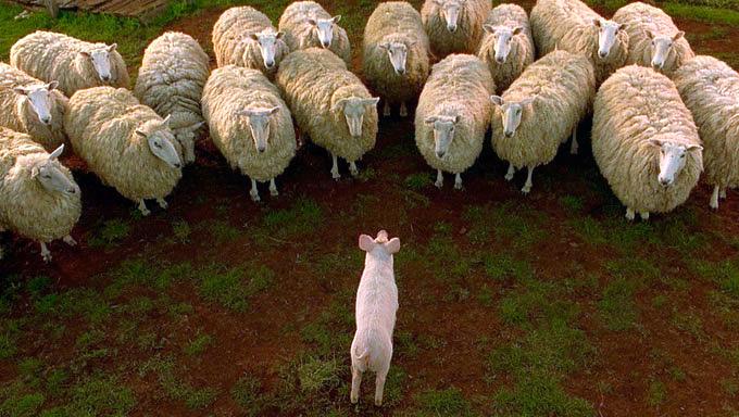 Кино про говорящих животных