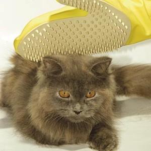 Рукавичка для кошки