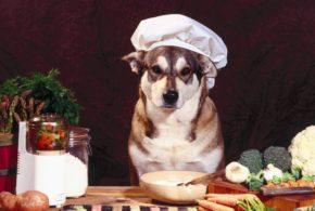 """Переходим на натуральную пищу! Несколько рецептов """"собачьих радостей"""""""